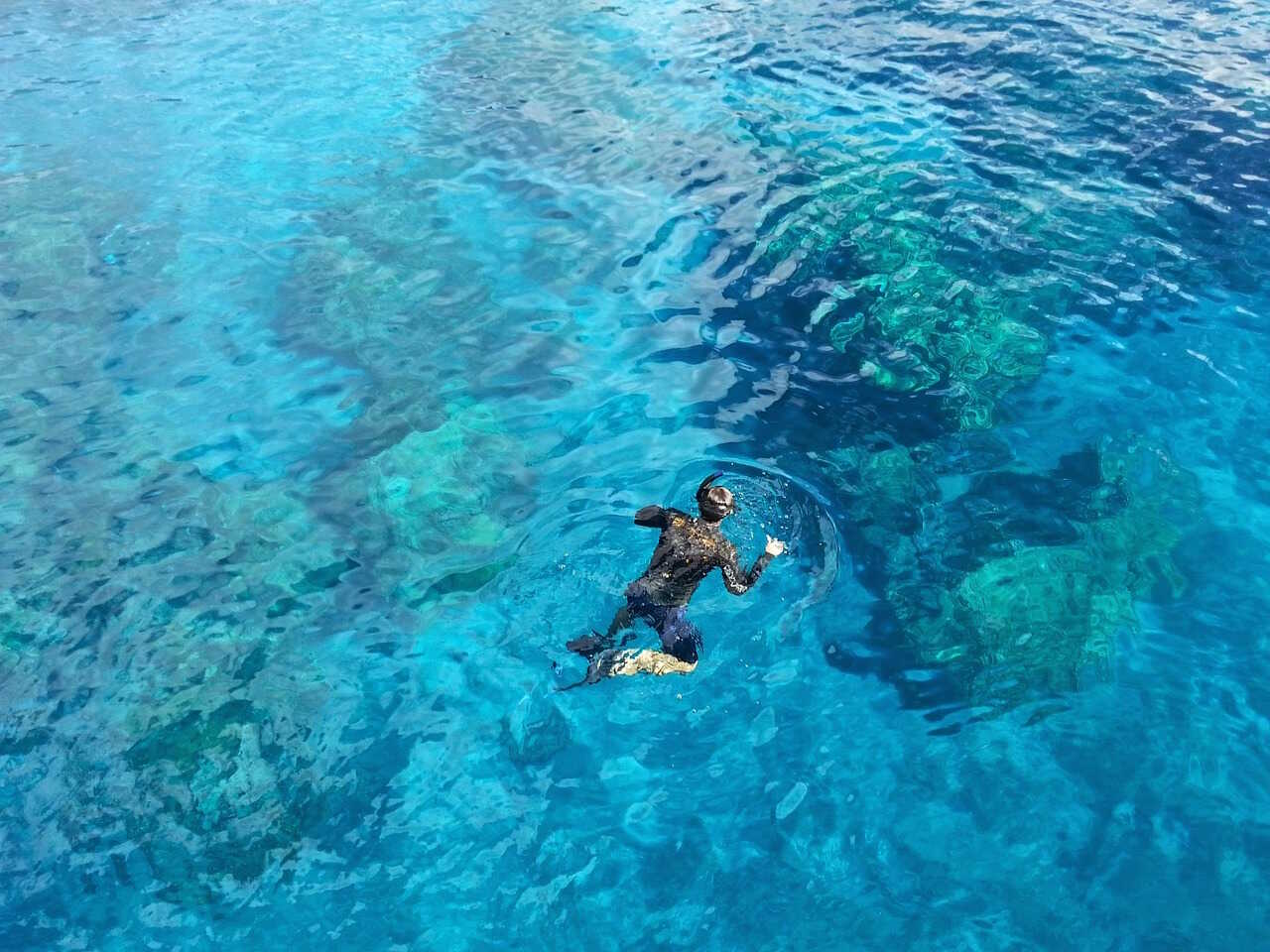 dykning-paa-maldiverne-snorkling